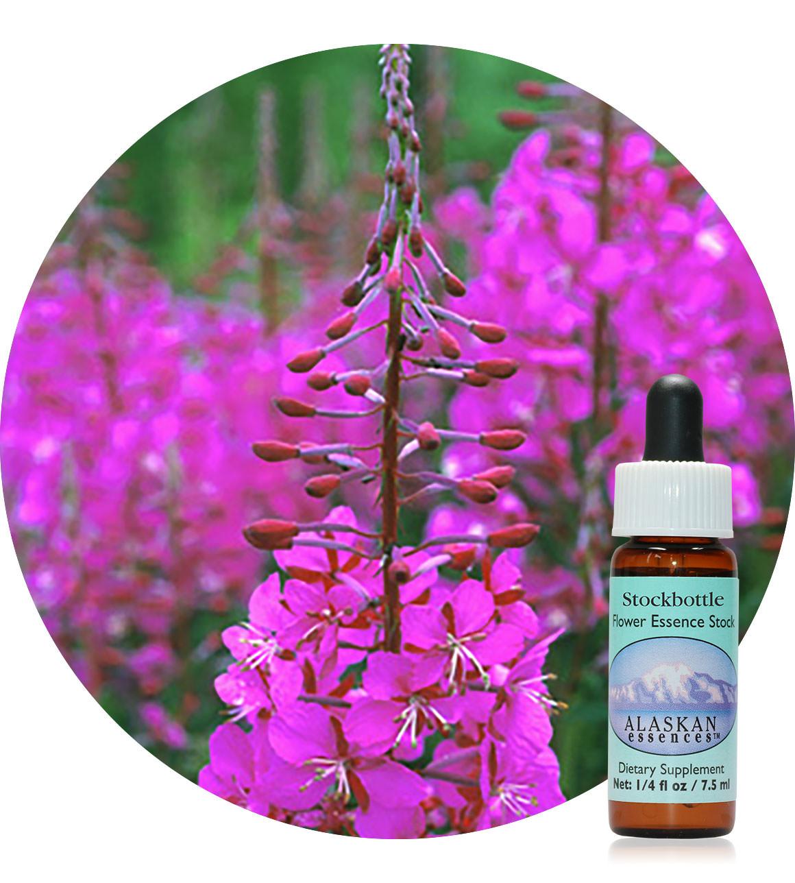 Fireweed 7,5 ml