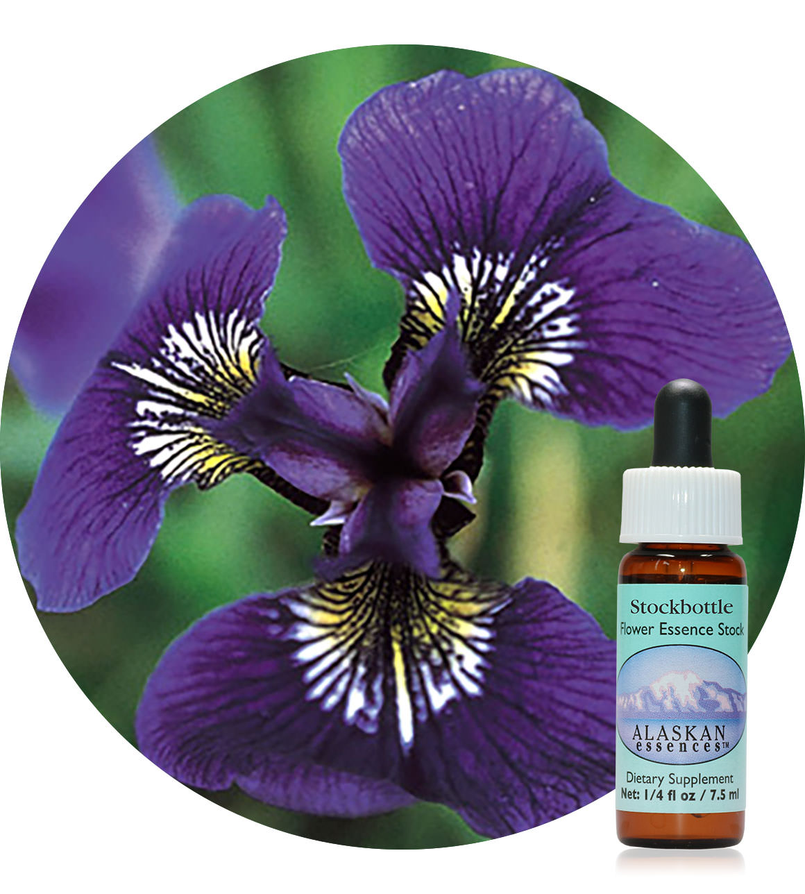 Wild Iris 7,5 ml