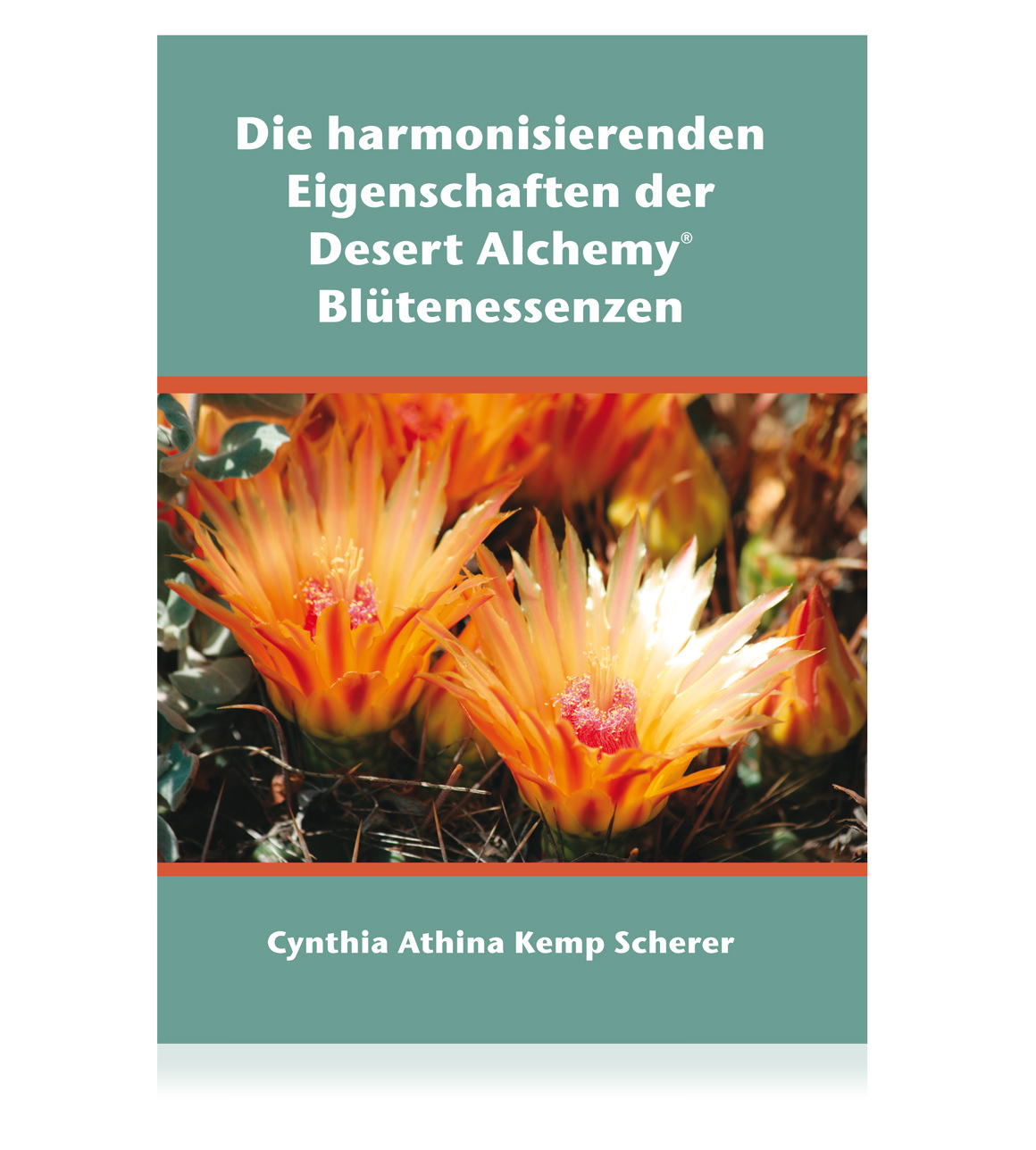 Die harmonisierenden Eigenschaften der Desert Alchemy Blütenessenzen
