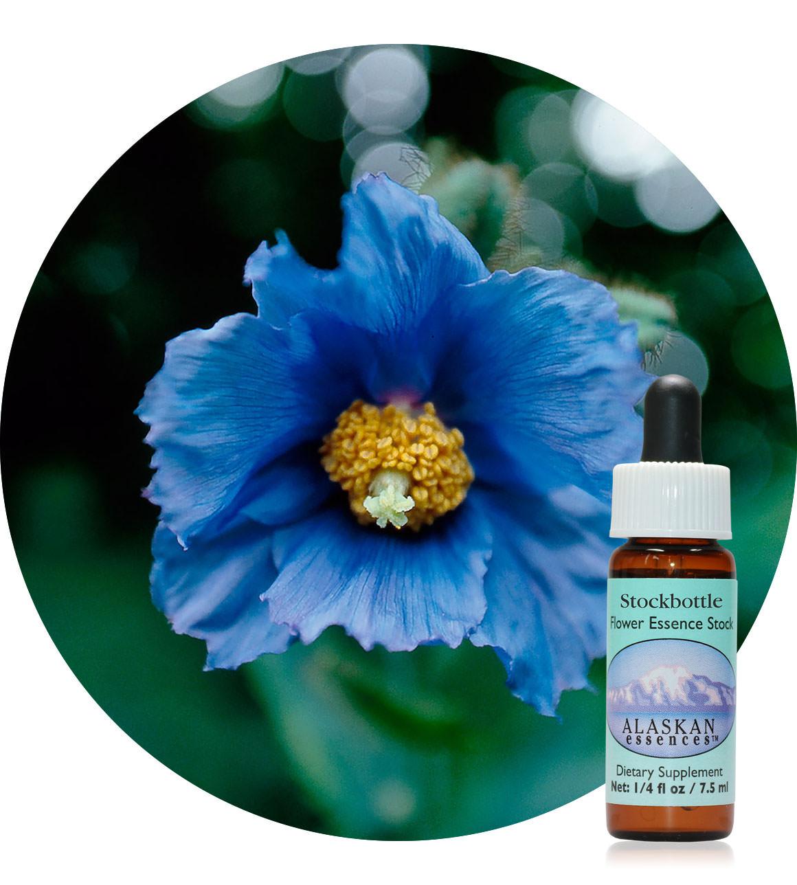 Blue Poppy (F) 7,5 ml