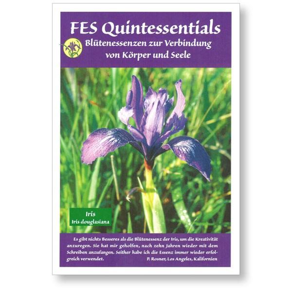 FES Quintessentials Booklet