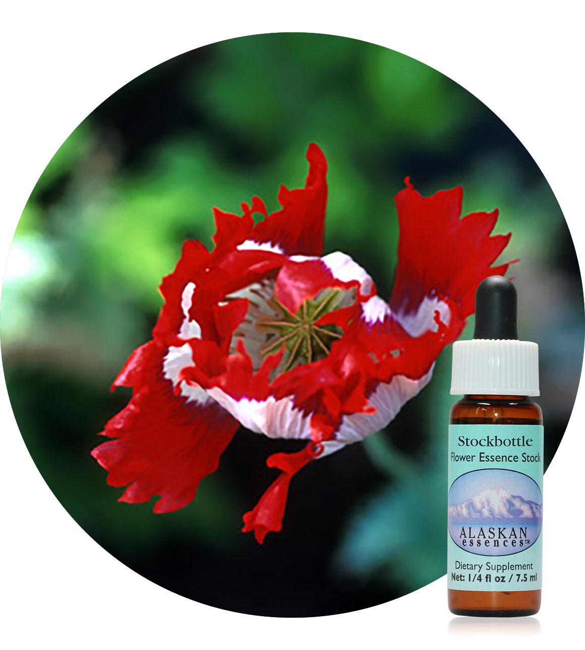 Opium Poppy 7,5 ml